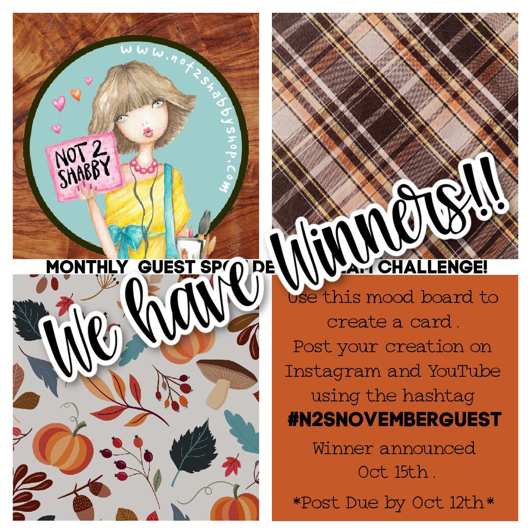 Our Guest Designer Winners for November are...
